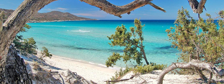 Vacanza in Corsica - Saleccia